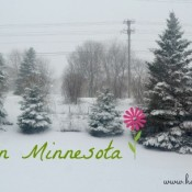 Spring in Minnesota