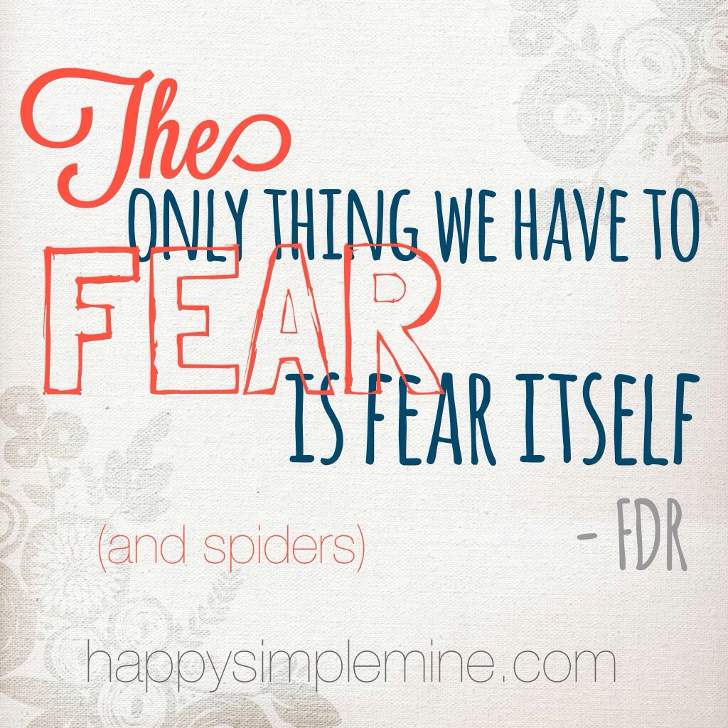 The only thing we have to fear, is fear itself.